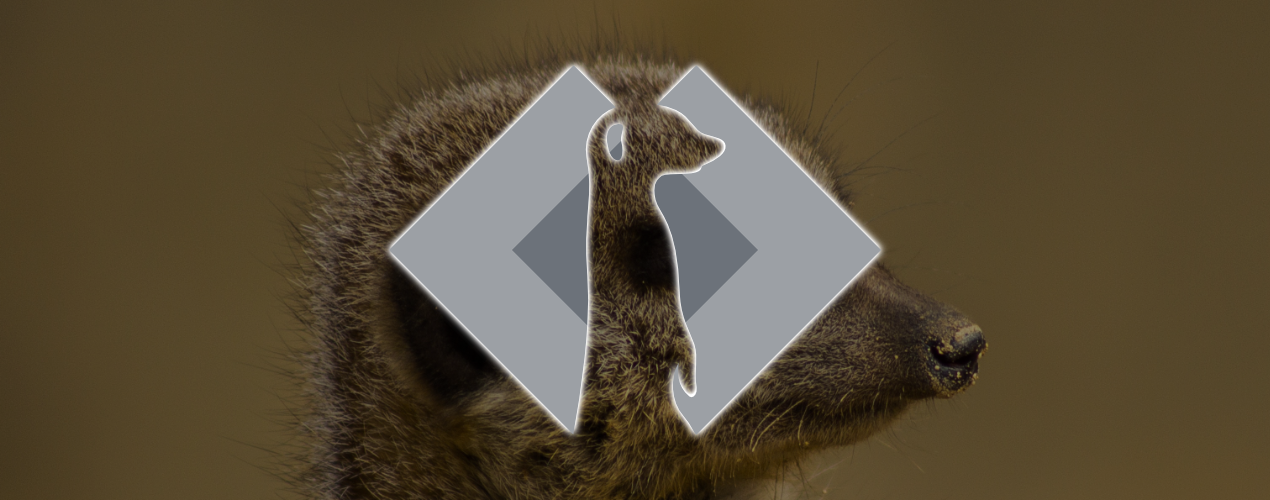 Announcing Meerkat: A Comment System for Statamic